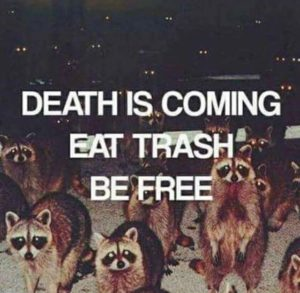 stop eating out of the dumpster